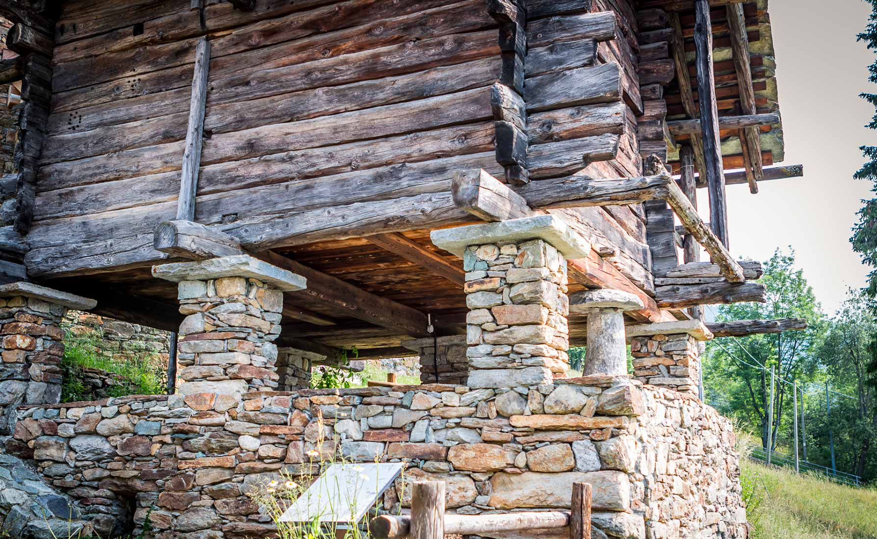 I funghi utilizzati per tenere l'umidità lontana dal granaio: uno di questi risale all'epoca della struttura.